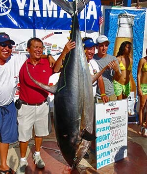tuna catch at fish tournament