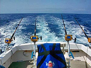 fishing reel for costa rica waters