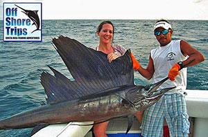 nosara-sail-fish